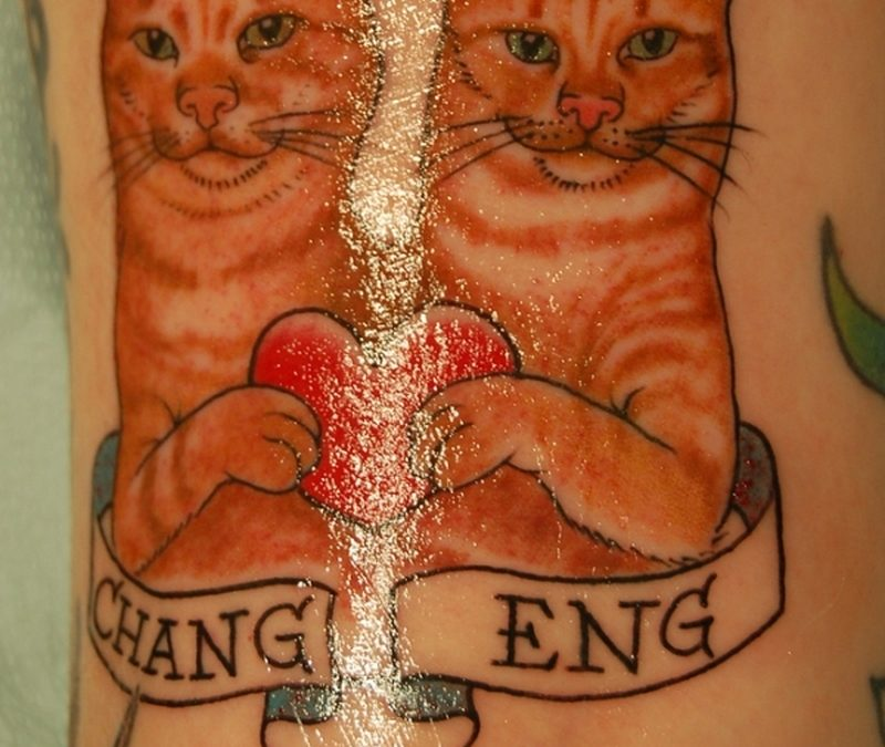 Cat couple tattoo design