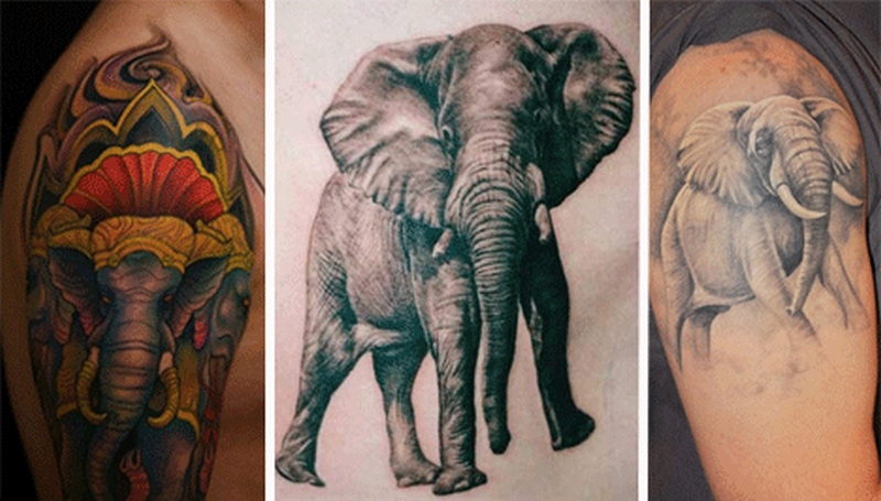 Elephant tattoo pictures