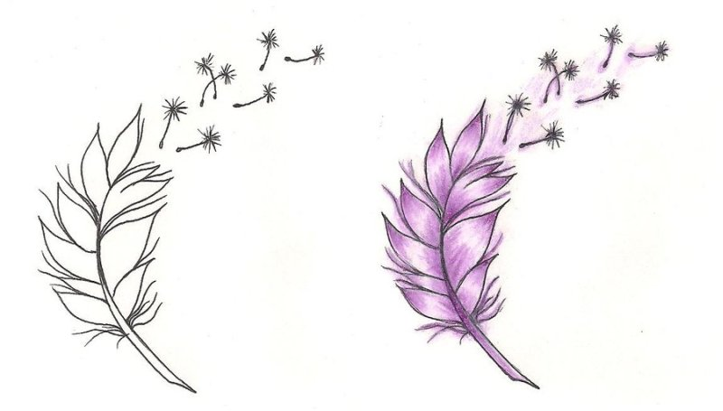 Feather n dandelion tattoo designs
