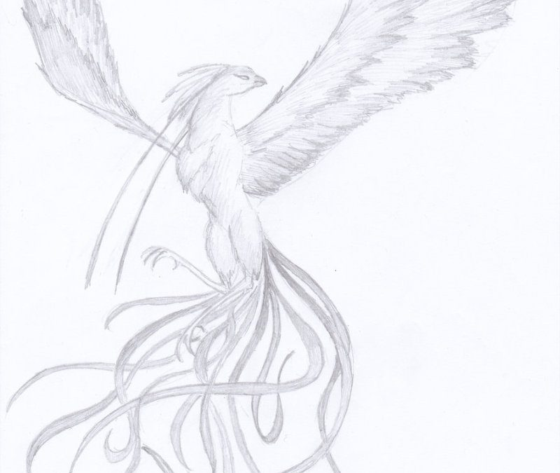 Flying phoenix bird sketch tattoo