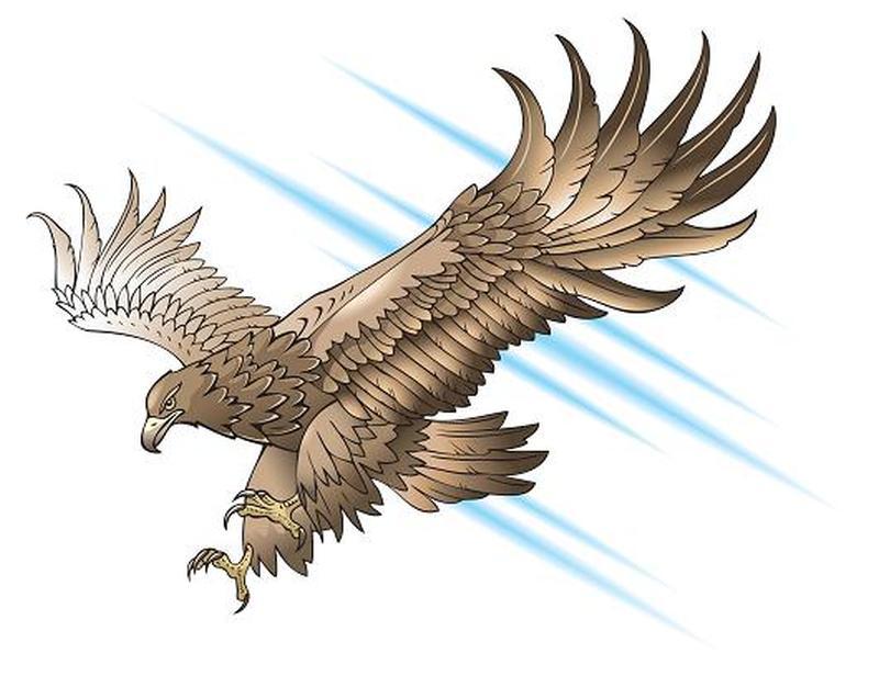 Glorious eagle tattoo design