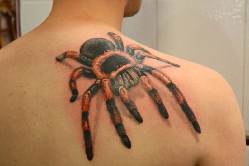 Great colorful tarantula on back tattoo