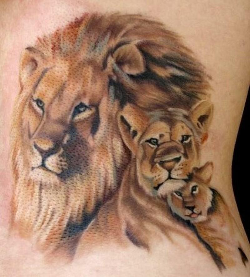 шторы тату семья львов фото общее название