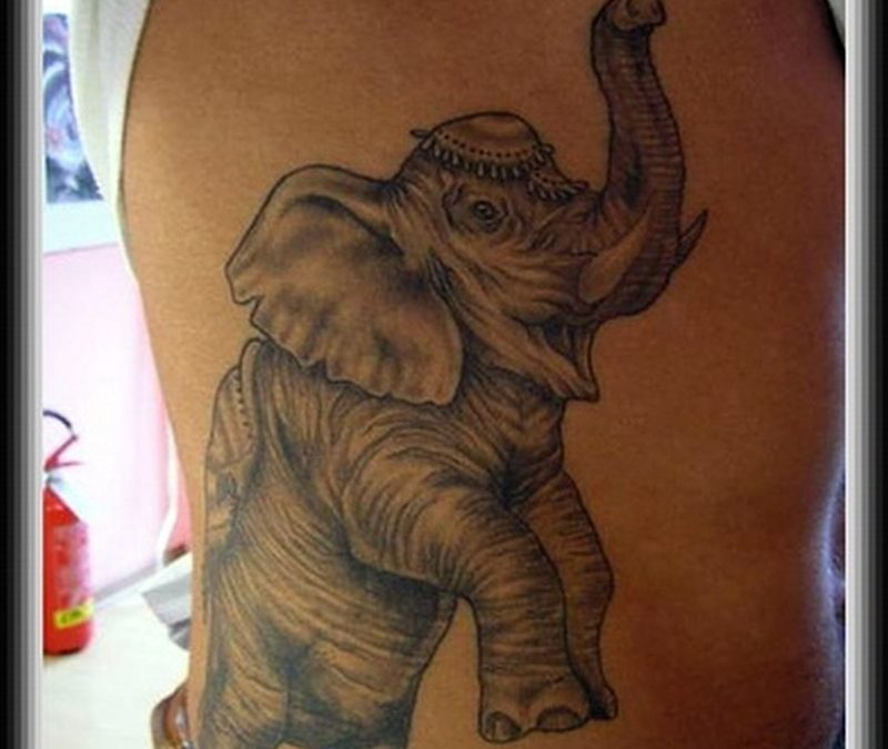 Grey ink elephant tattoo design on ribs