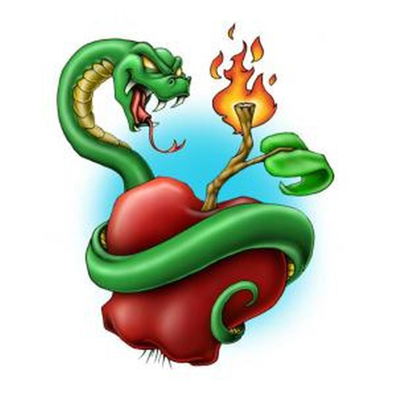 Snake on firing apple tattoo design
