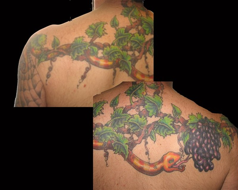 Snake on grapes branch tattoo design