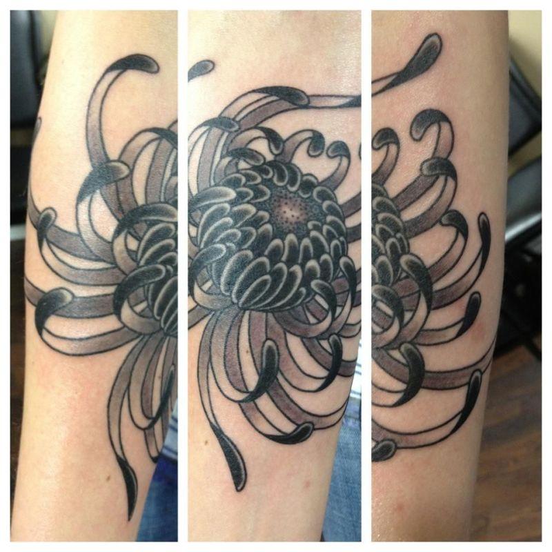 Spider chrysanthemum tattoo design