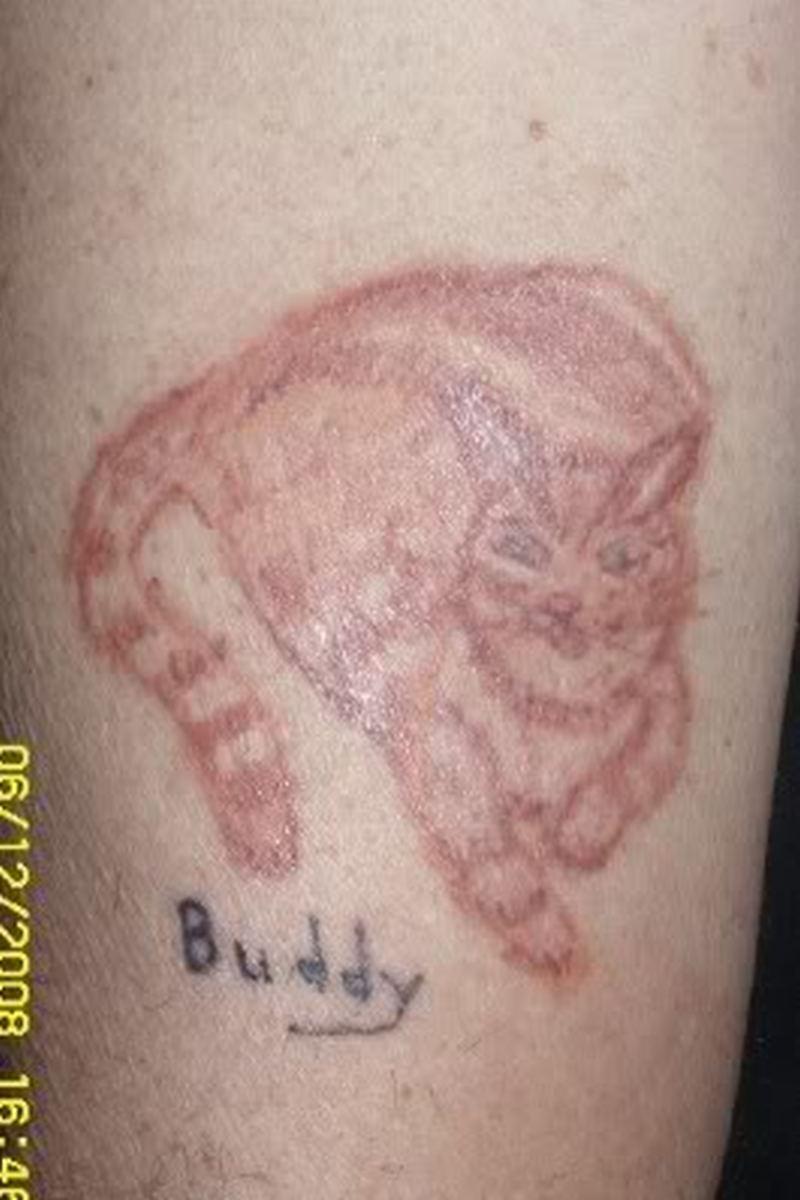The cat tattoo