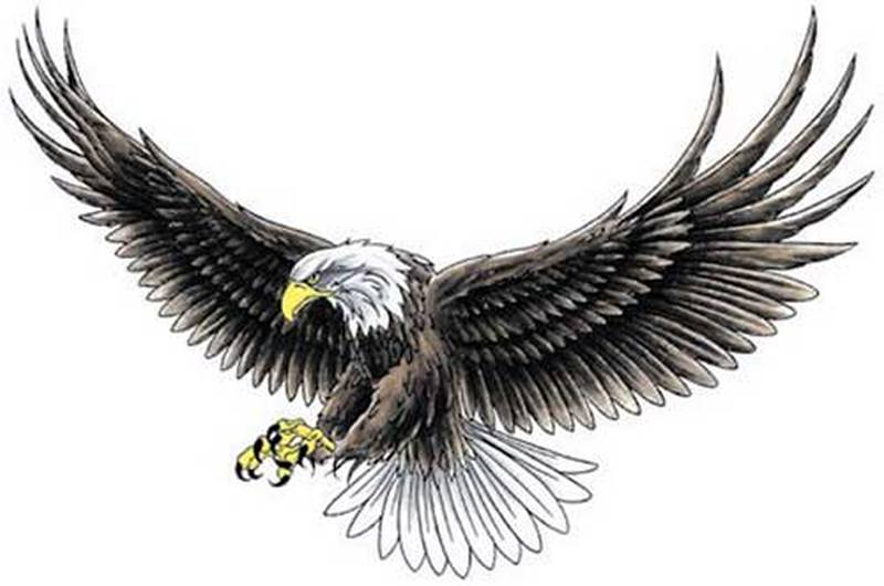 Truly awesome eagle tattoo design